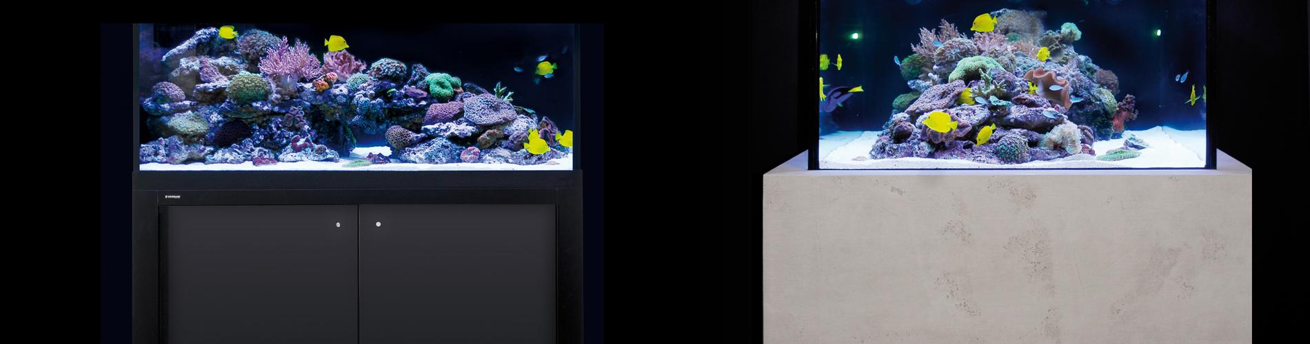 PULZAR Giesemann Aquaristic